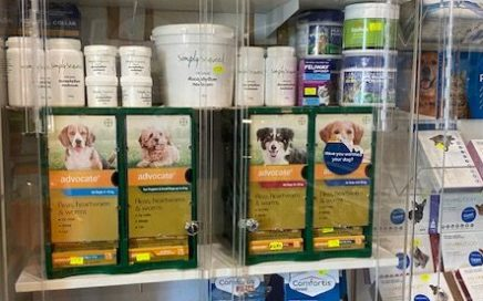 Worming and Flea Treatments
