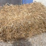 Meadow Straw Bale