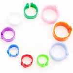Poultry Rings